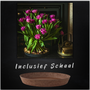 My mom is a tulip LOVER - Product
